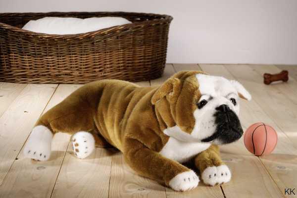 Pluschtier Englische Bulldogge Leonardo